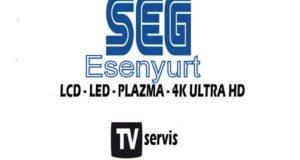 Esenyurt Seg Tv Servisi